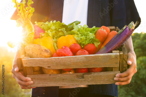 Stampa su Tela Fresh vegetable harvest and carrying by farmer at beautiful sunset
