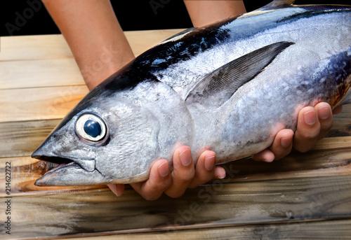Photo Fresh young bluefin tuna.