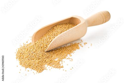 Fotografia Heap of raw, unprocessed mustard seed kernels in wooden scoop on white