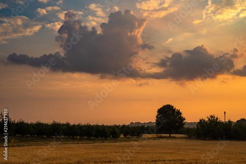 Foto auf Gartenposter Landschappen Wolke im Sonnenuntergang