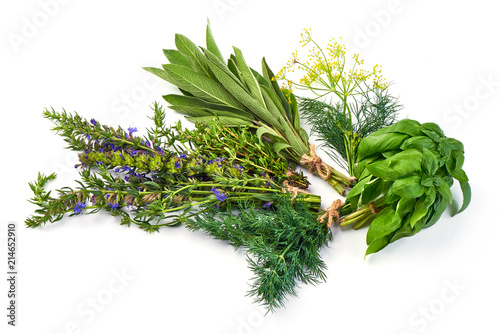 Garden Poster Plant Bunch of sage, thyme, dill, hyssop and basil, isolated on white background.