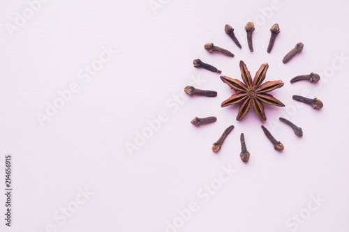 Composition of star anise and cloves on pink background Canvas Print