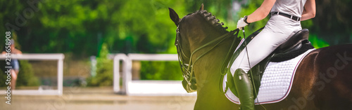 Foto op Canvas Paarden Horse horizontal banner for website header design. Dressage horse and rider in white uniform during equestrian competition. Blur green trees as background.