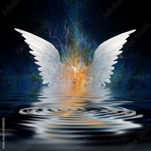 Fotografia Angel wings