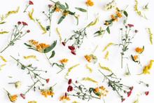 Autumn Floral Composition. Pat...