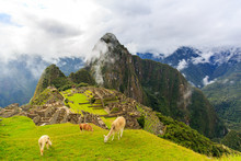 Machu Picchu Day1 .Apres Le Camino Del Inca..https://www.strava.com/activities/1597662003