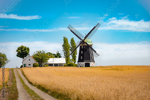 Photo  Wheat windmill. Harvest concent. The Stock Photo.