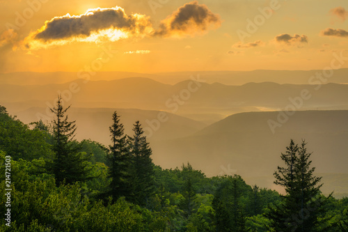 Photo Sunrise view from Bear Rocks Preserve in Dolly Sods Wilderness, Monongahela National Forest, West Virginia