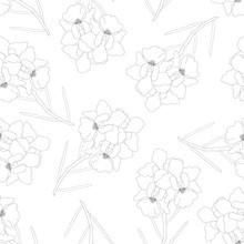 Vanda Miss Joaquim Orchid Flow...