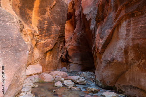 Deurstickers Canyon Kanarra creek slot canyon in Zion national park, Utah, USA