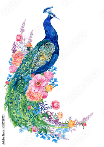 big bird and peacock flowers .watercolor hand painting Wall mural