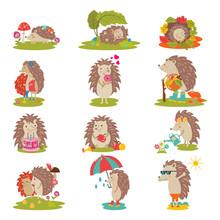 Hedgehog Vector Cartoon Prickl...