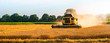 canvas print picture - big combine harvester threshing in the sunset.