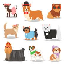 Dog Vector Puppy Pet Animal Do...