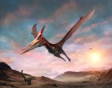 Pteranodon Scene 3D Illustration