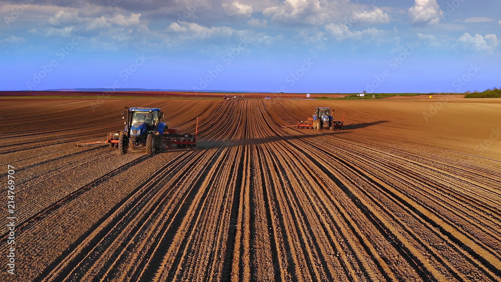 Fototapety, obrazy: Farmers in tractors seeding, sowing agricultural crops in field at sunset