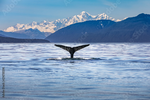 Scenic Alaska with a whale tail in the foreground Canvas Print