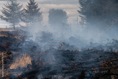 Photo A smouldering grass fire next to a forest on a Welsh mountain
