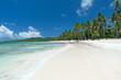 Beautiful Tropical Caribbean beach in the Dominican Republic