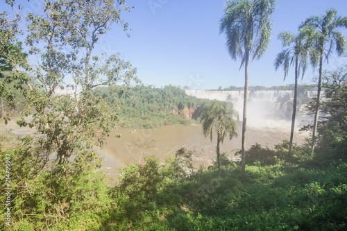 Fototapeta Iguassu National Park obraz na płótnie