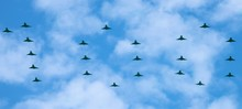 The Largest Ever Formation Of ...