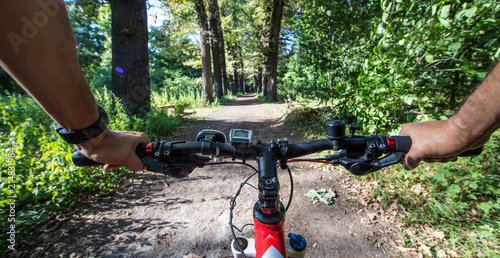 Hands on a mountain bike in a forest