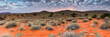 canvas print picture - Panoramic landscape photo views over the kalahari region in South Africa
