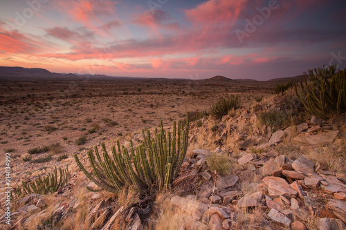 Tuinposter Diepbruine Panoramic landscape photo views over the kalahari region in South Africa