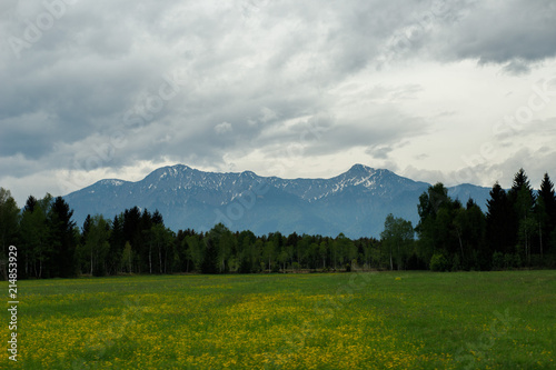 In de dag Donkerblauw landscape in the Alps with fresh green meadows and snow-capped mountain peaks in the background, Bavaria, Germany