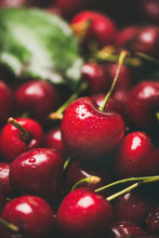 Fresh Sweet Cherry Texture, Wallpaper And Background. Wet Sweet Cherries, Selective Focus, Close-up. Summer Food Or Local Market Produce Concept