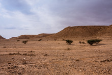 A Desert Landscape South-east Of Riyadh, Saudi Arabia