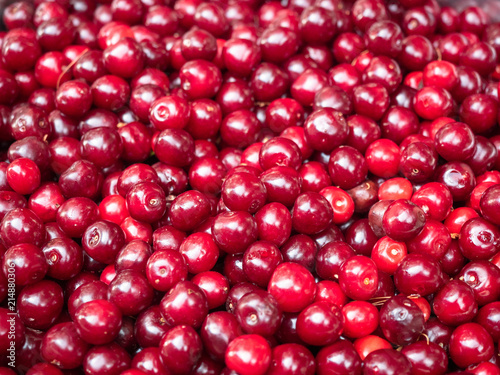 Red ripe cherry close up. View on pile of red cherry. Heap of red berries closeup. Ripe cherry piled on the ground. Blurred background. Soft selective focus