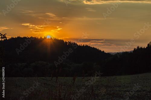 Staande foto Zwart Nice sunset with trees and field silhouette, Czech landscape