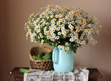 Cucumbers And Daisies. Still Life With A Bouquet Of Flowers In A Jug And Vegetables.