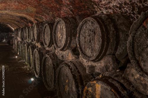 Photo Barrels of wine in the cellar, Slovakia