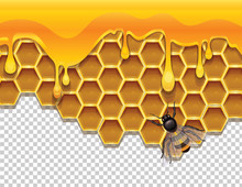 Vector Colorful Illustration Of Honeycombs With Liquid Honey And A Bee. Natural Honey Drops Over Hive. Realistic Graphic Design Template Of A Bee Over Cells With Honey Isolated From Background