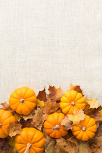 Autumn Harvest Pumpkin Background Border