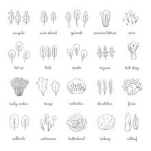 Hand Drawn Popular Types Of Sa...
