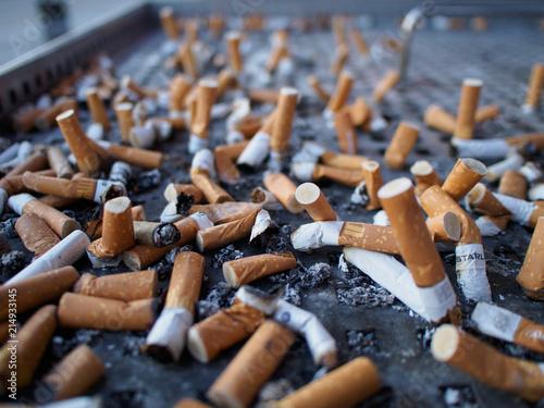 Fotografia, Obraz  Cigarette butts, concept of dangerous and health harmful smoker lifestyle