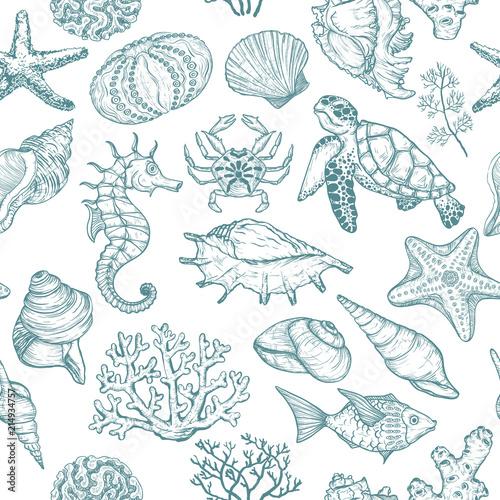 szwu-z-szkicu-seal-ocean-organizmow-zywych-muszli-ryb-koralowcow-i-zolwia