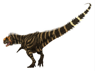 Rajasaurus Dinosaur Tail - Rajasaurus was a carnivorous theropod dinosaur that lived in India during the Cretaceous Period.