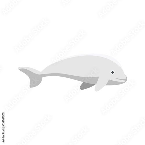 Fotografie, Tablou  Beluga whale icon