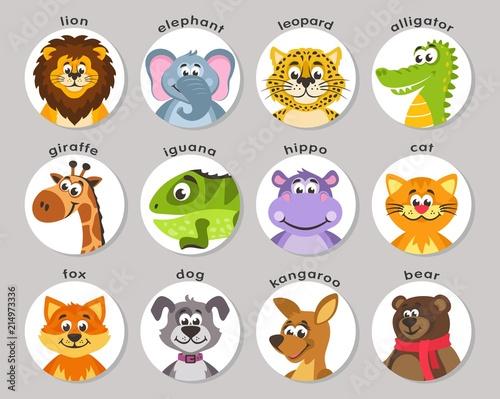 Fotografía  A set of animal portraits in a round frame