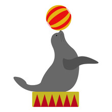 Isolated Circus Seal