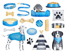 Collection Of Different Dog Br...
