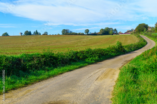 Foto op Aluminium Pool Country road in Cote dOr, Burgundy