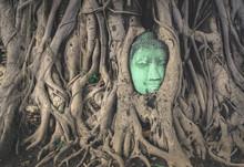 Ayutthaya Head Buddha In The Tree Roots At Wat Mahathat Ayuthaya, Thailand.