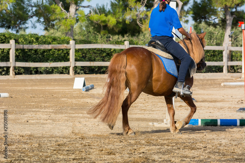 Man Riding a Horse in a Riding School during a Competition on Blur Background
