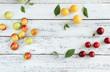 canvas print picture - Wildpflaumen verschiedene Sorten Wildfrüchte Pflaumen Zwetschen Kirschpflaumen Wildobst Wild Obst