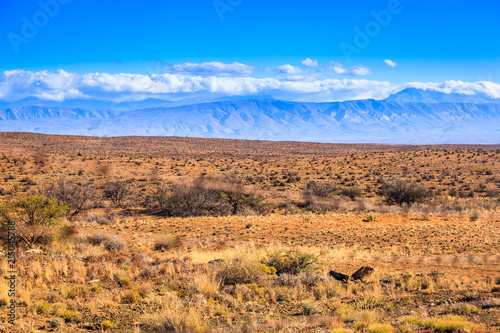 Photo  The dry desert landscape of the Karoo, Western Cape, South Africa